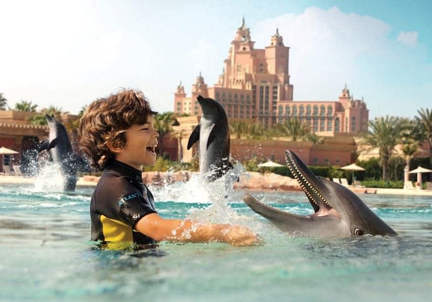 Atlantisdelphin