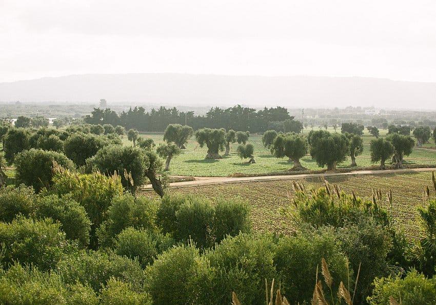 Apulien Blog Borgo Egnazia