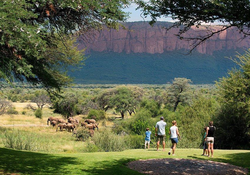 Safari Tag mit EWTC