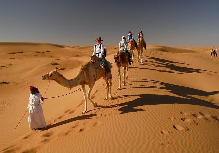 Camel Riding At Wahiba Sands