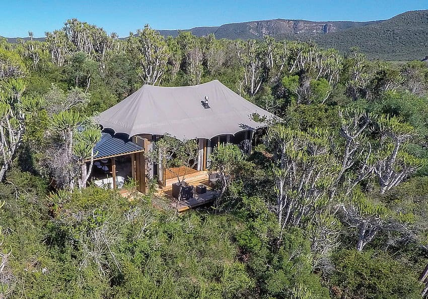Luxuszelt Kariega Stllers Drift Lodge