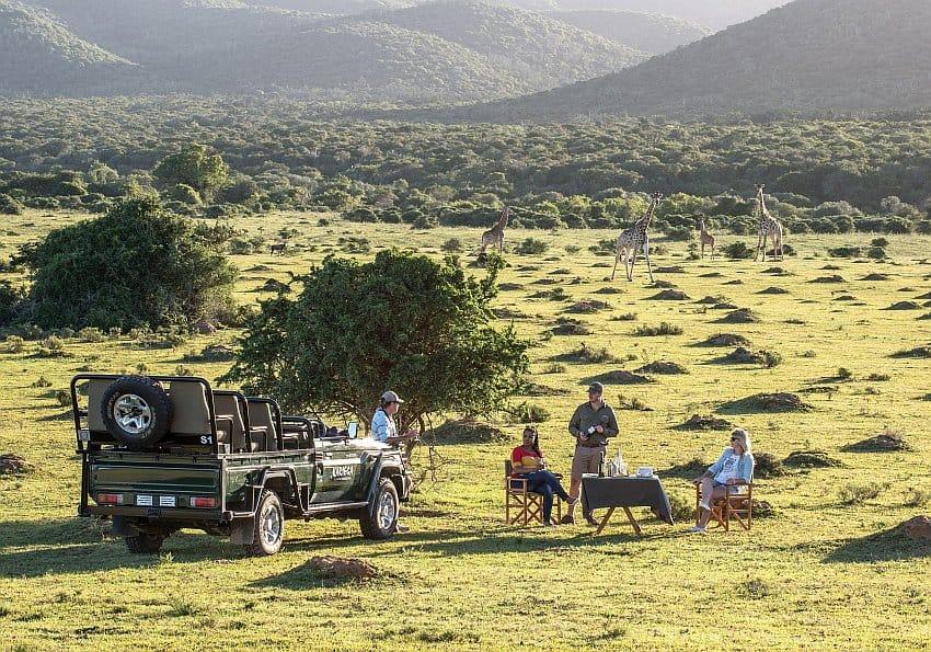 Safari Tag EWTC
