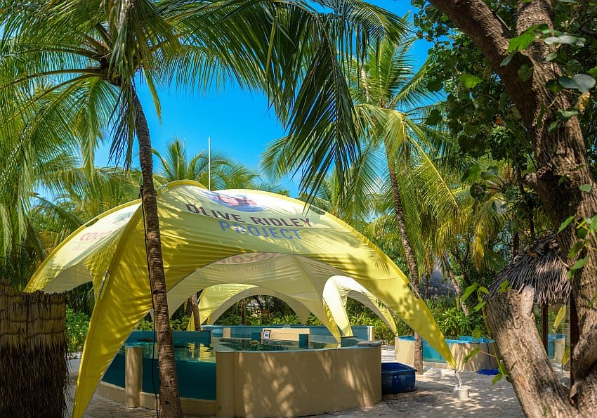 Schildkrötenrettungszentrum Malediven