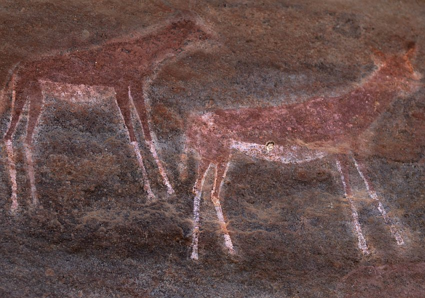 Rock Art Safari