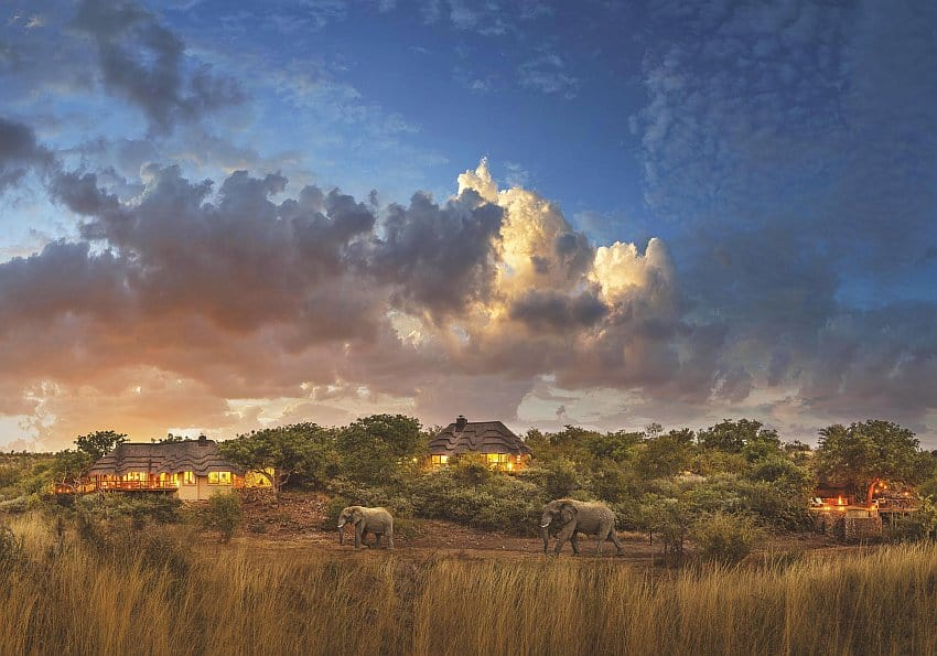 Elefanten Tuning i Lodge