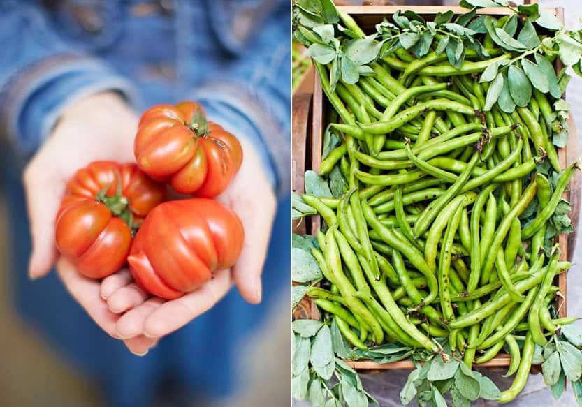 Frisches Gemüse auf den Märkten der Toskana