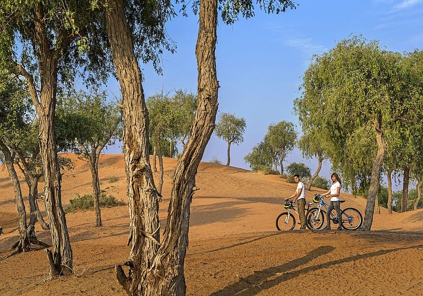 The Ritz Carlton Al Wadi Desert Bicycle Trail