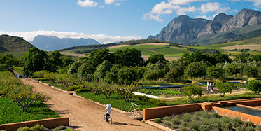 Hotels in den Winelands