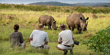 Safari-Lodges in Südafrika
