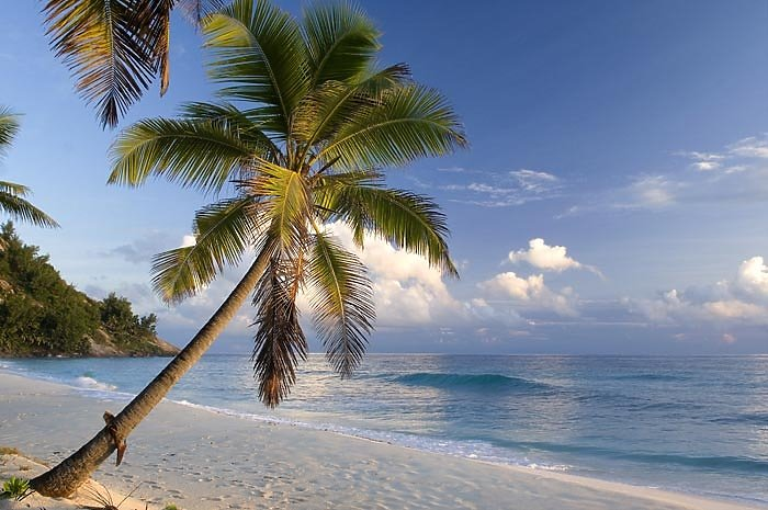 north island resort seychellen jetzt g nstig buchen ewtc. Black Bedroom Furniture Sets. Home Design Ideas