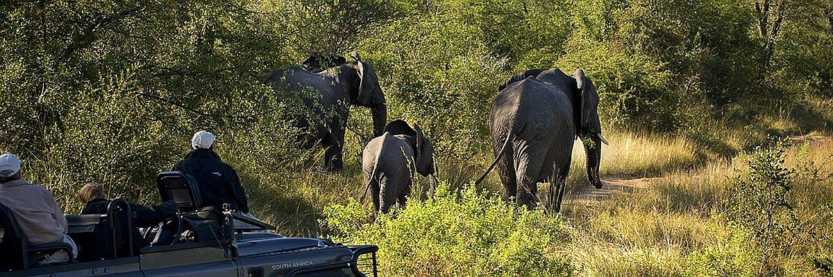 Südafrika Reisen und Südafrika Sonderangebote