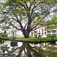 Le Meridien Chiang Rai - Regenbaum