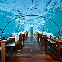 Ithaa Unterwasserrestaurant - Conrad Maldives Rangali Island