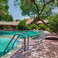 Jungle Beach by Uga Escapes - Pool