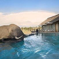 Mhondoro Game Lodge