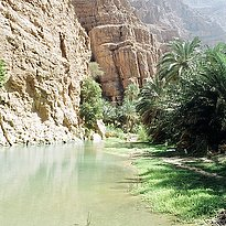 Rundreise Oman - Oman's Fascinating Nature