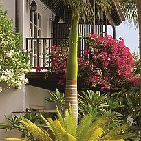 Gartenansicht - Seaside Grand Hotel Residencia