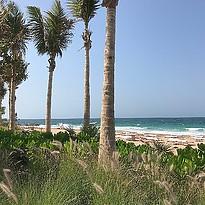 Strand des Caesars Palace Bluewaters Dubai