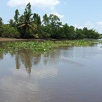 Wasserkanäle im Mekong