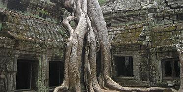 Angkor Wat und Ta Phrom