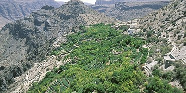 Rundreise Oman's Fascinating Nature