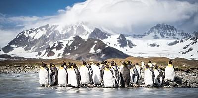 Antarktis - HANSEATIC spirit