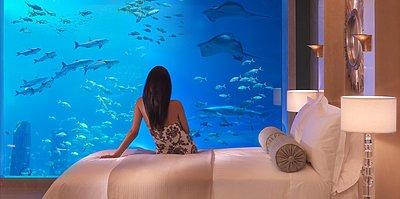 Underwater Suite (Auf Anfrage)