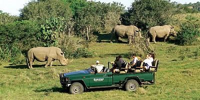 Kariega Game Reserve