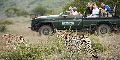 Kwandwe Private Game Reserve