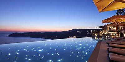 Pool - Myconian Utopia