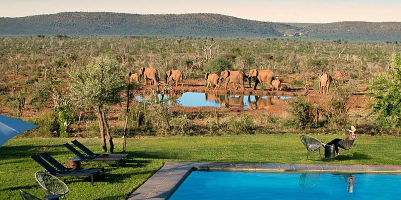 Lelapa Lodge Pool - Madikwe Safari Lodge