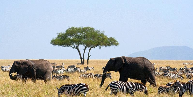 Rundreise Tansania